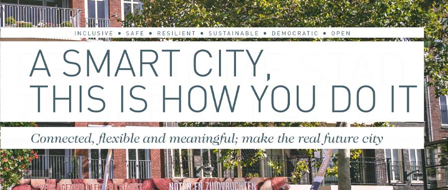 Order the book 'A smart city, this is how you do it'
